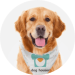 Doghouser
