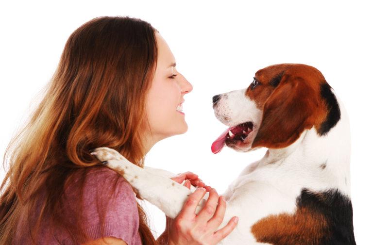 Beneficios de tener una mascota durante la cuarentena