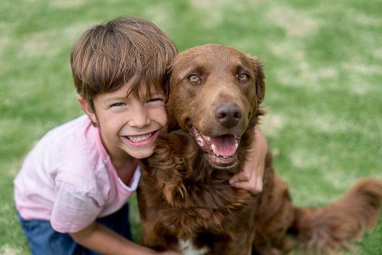 Beneficios de que un niño tenga perro