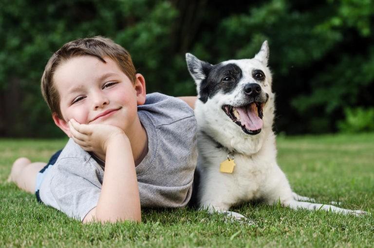 La relación entre un niño y un perro